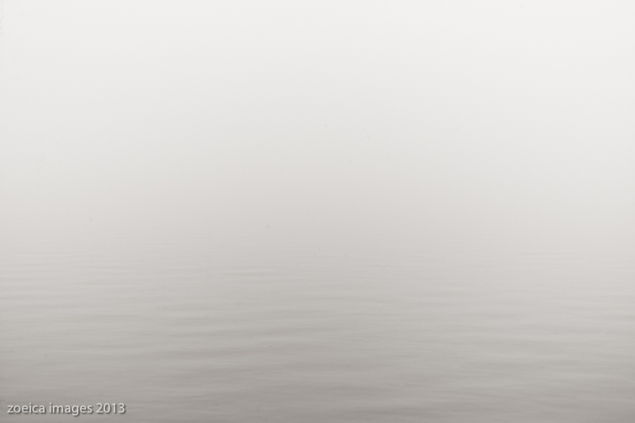 shore line in fog potomac river washington Dc photography