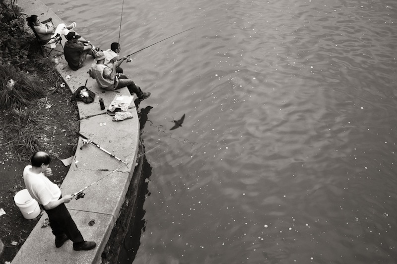 fishing in the tidal basin washington dc photography